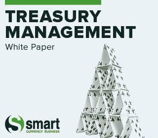 Treasury Management White Paper